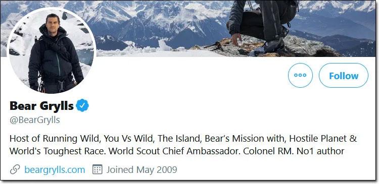 Bear Grylls Twitter Profile